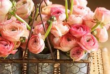 Flowers make a room come alive
