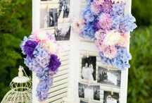 Shutter - wedding decoration