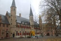 Abbey of Middelburg / De abdij van Middelburg