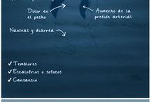 Trastornos psicologicos / Síntomas, consejos y tratamiento de los principales problemas psicológicos