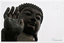 Buddha-meditáció