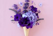 • purple •