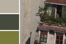 color palette inspiration / color palette inspiration