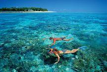 I wish I was here!