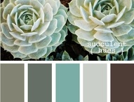 Paint color / by Amy Lowe