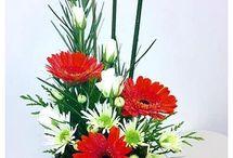 Flowers / kukkia