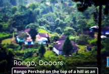 Dooars Tour Packages / Shah Tours - Travel Agent in Siliguri specializes in a wide range of customized and fixed departure holiday options for Siliguri,Sikkim, Darjeeling and Bhutan. West Bengal, India http://www.shahtour.com/index.php