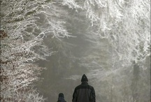 Winter pictures / by Michelle Soto
