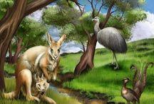 Zvířata obrázky