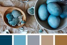 Renklerin birlikteLigi / Colors