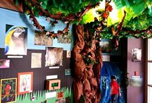 Kindergarten - Rainforest Unit