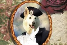 I ♥ White German Shepherd