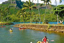 'Ohana (family in Hawaiian) / Bring your family and enjoy Hawaii!
