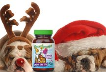 Health Products / LIDTKE is a manufacturer of Dietary Supplements.  Last minute holiday specials and ideas.