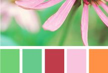 color swatch / by Kimberly Hall