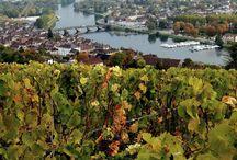 Joigny (Bourgogne nord)