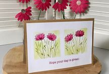 daisy delight cards