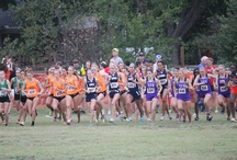 Cross Country / by ORU Athletics