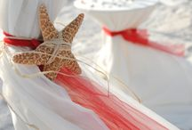 Beach || Wedding / Driftwood, seastars, shells and sand. Warm grey and light blue colors.