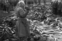 Comparativa WWII