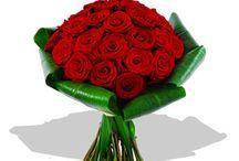 Fleurs / Roses rouges