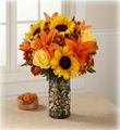 Autumn Flowers / Beautiful Fall Flowers!