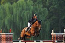 Equestrian / by Nicole Rino