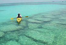 Key west adventure / by Angela Davis Johnson