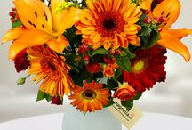 Fall Flowers/ Buchete cu flori de toamna