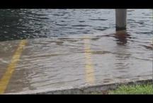 Hurricane Sandy / by MulletRun Fishing