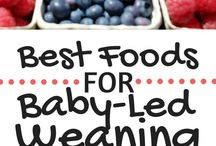 Kids: BLW baby food