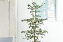 Tökéletlen karácsonyfák // Imperfect christmas tree