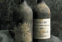 Cellar / vini e cantine