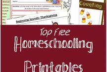 Homeschool / Homeschool resources for preK to Kindergarten levels, hopefully.