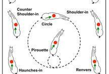 sidebevegelser