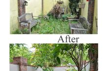 Before & After / Gardens to Love before and after photos.