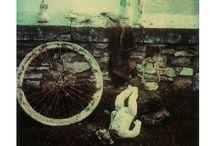 Alternative - Polaroid / by Tammy Boyce