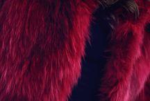 ✿ ʚིϊɞྀ ♥ Lady in Fur ♥ ʚིϊɞྀ ✿