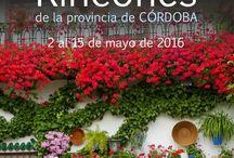 Mes de Mayo en Córdoba / Actividades en el mes de Mayo en la provincia de Córdoba, España