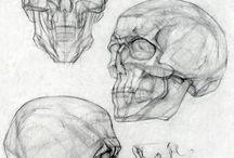 Рисунки(Человек) / Части тела, волосы