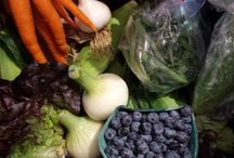 Oasis at Bird-in-Hand Deliveries / Organic, nutrient-rich fruits and veggies all Summer long!