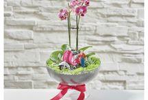 Özel tasarım çiçekler / Özel tasarım çiçek aranjmanları