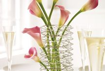 Centerpiece Favs / All things for a center of a table when entertaining. And then some!