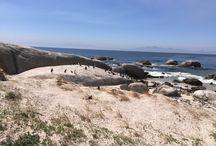Cape Town / Urlaub