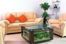 aquarium idea for living room