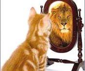Success / Self esteem / by Lorie Stadtmiller