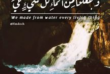 Water is life / we made from water every living thing.Surat Al-'Anbyā' (The Prophets) - سورة الأنبياء