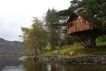 ağaç evleri :(