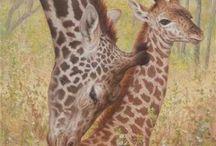 ART: Giraffes
