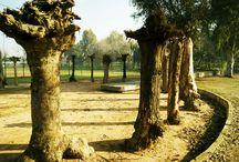 Arch_Linares